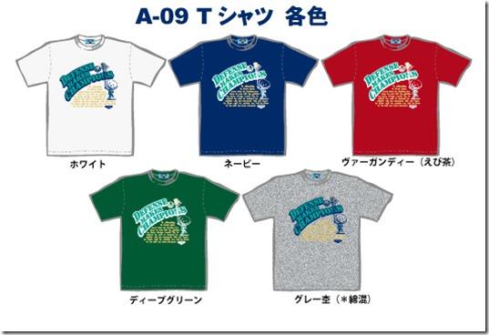 A-09Tシャツサイト用カンプ
